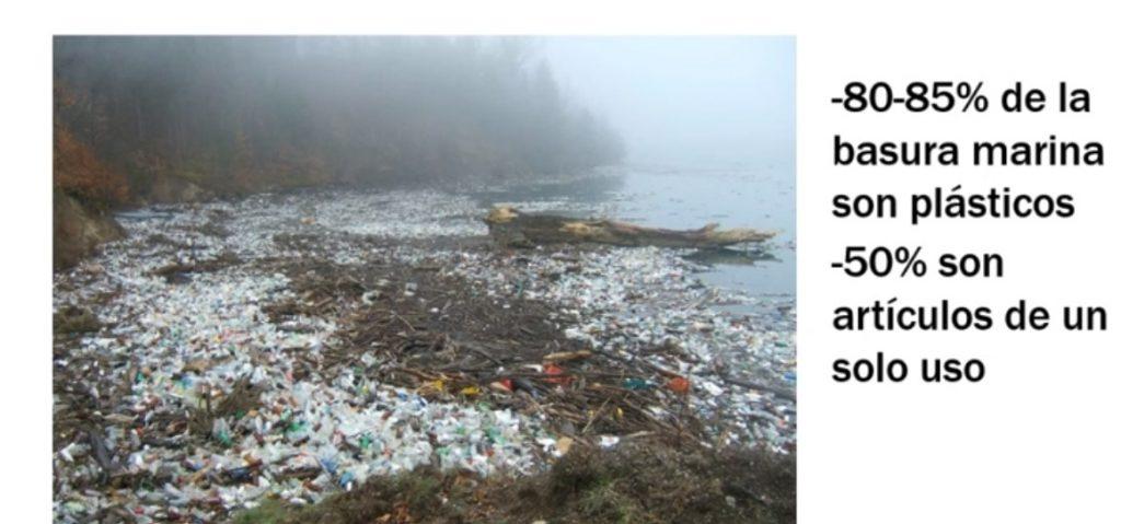 plasticos de un solo uso en los mares