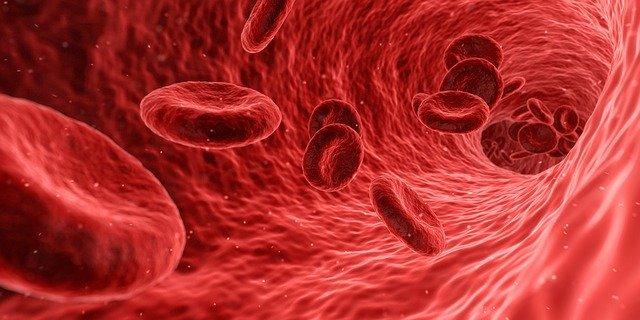 Microbioma sanguíneo