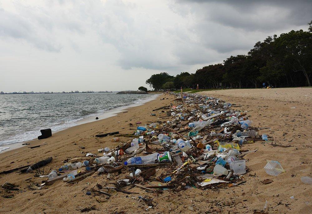 Consecuencias de la isla de plástico del pacífico