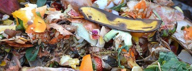La biomasa es materia orgánica