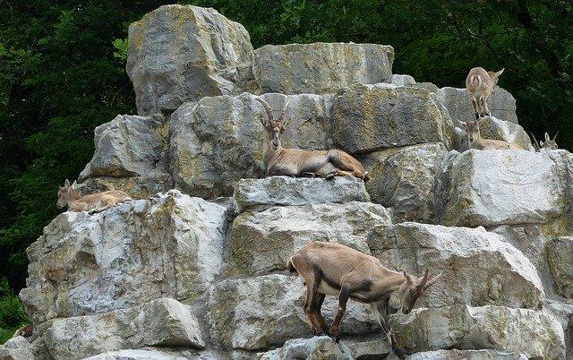 Espacio natural protegido por la Red Natura 2000