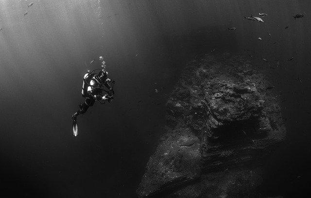 Buceando el fondo del mar