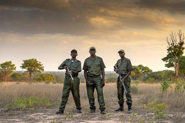 lucha contra la caza de elefantes
