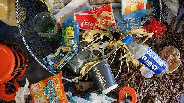Recogida de residuos en la playa